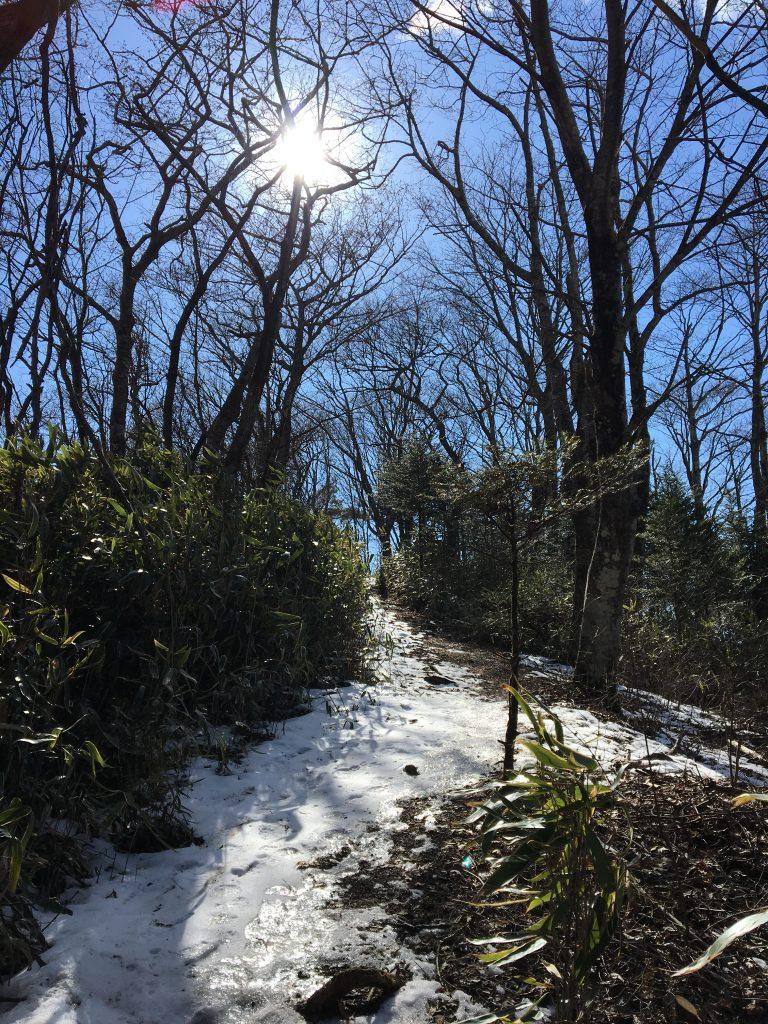石割山トレイルの残雪その2