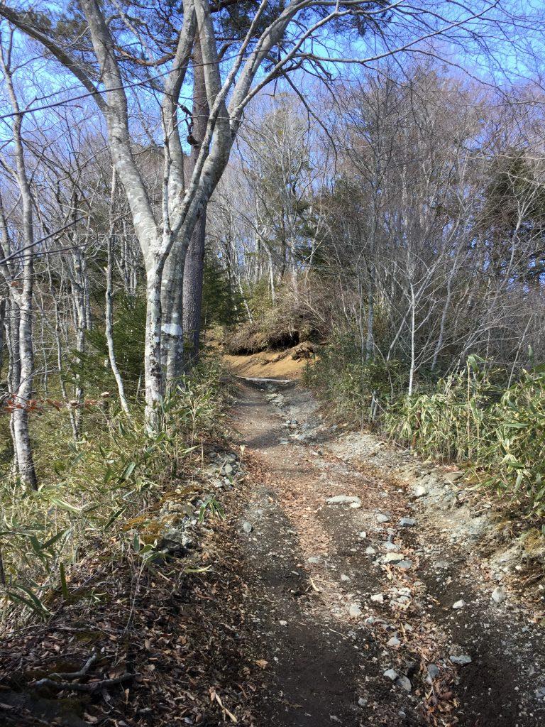 石割山トレイル