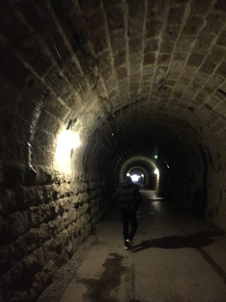 旧天城トンネルその2