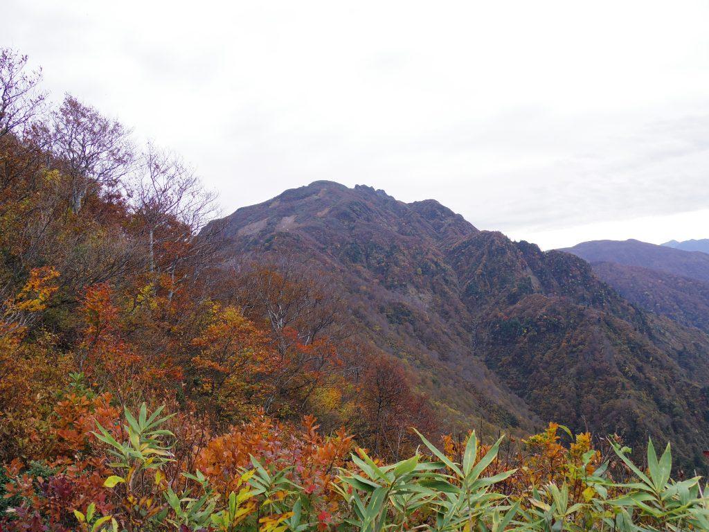 八海山トレイル1