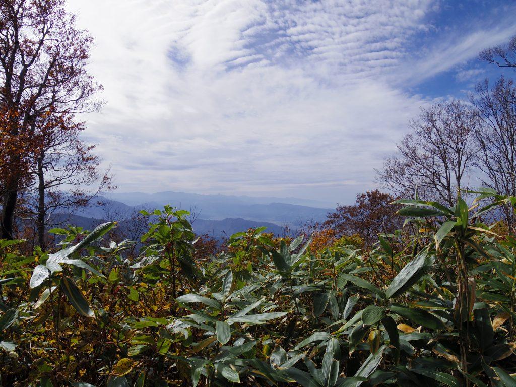 八海山トレイル3