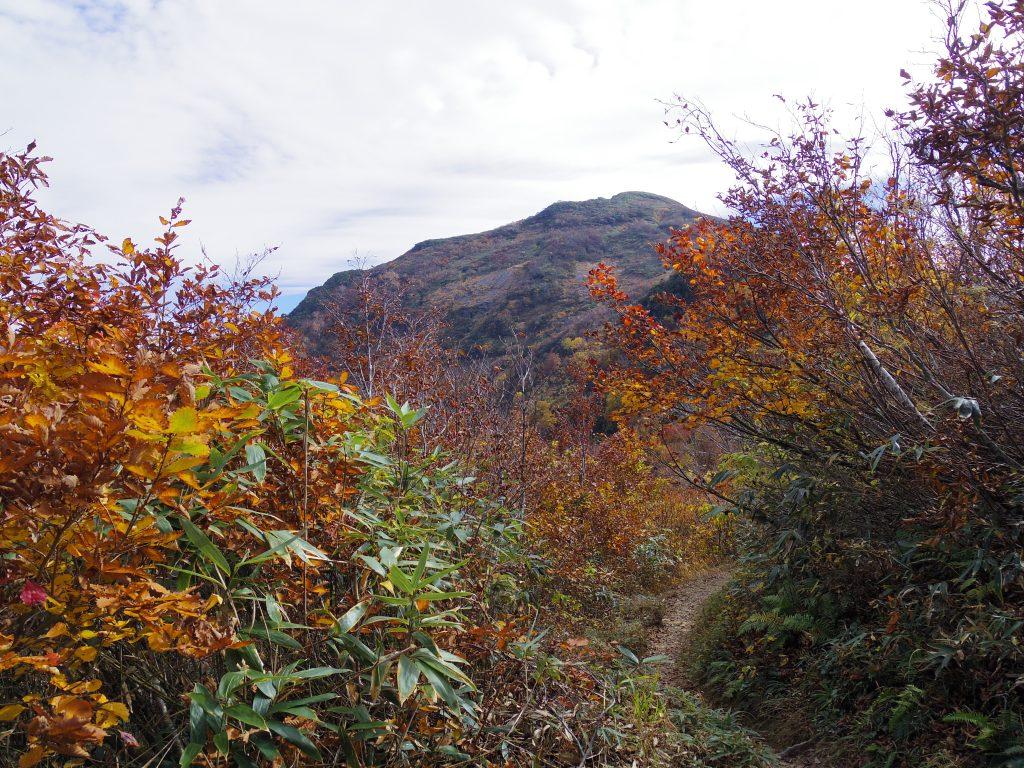 八海山トレイル4