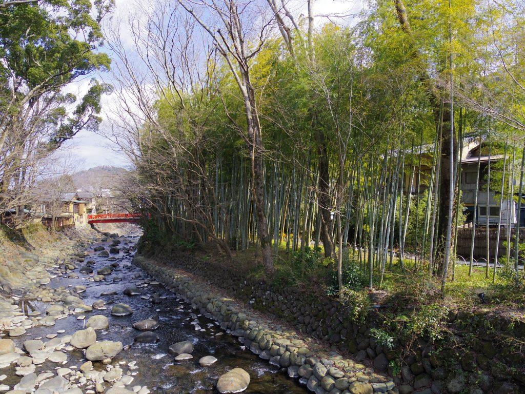 楓橋から竹林の小径