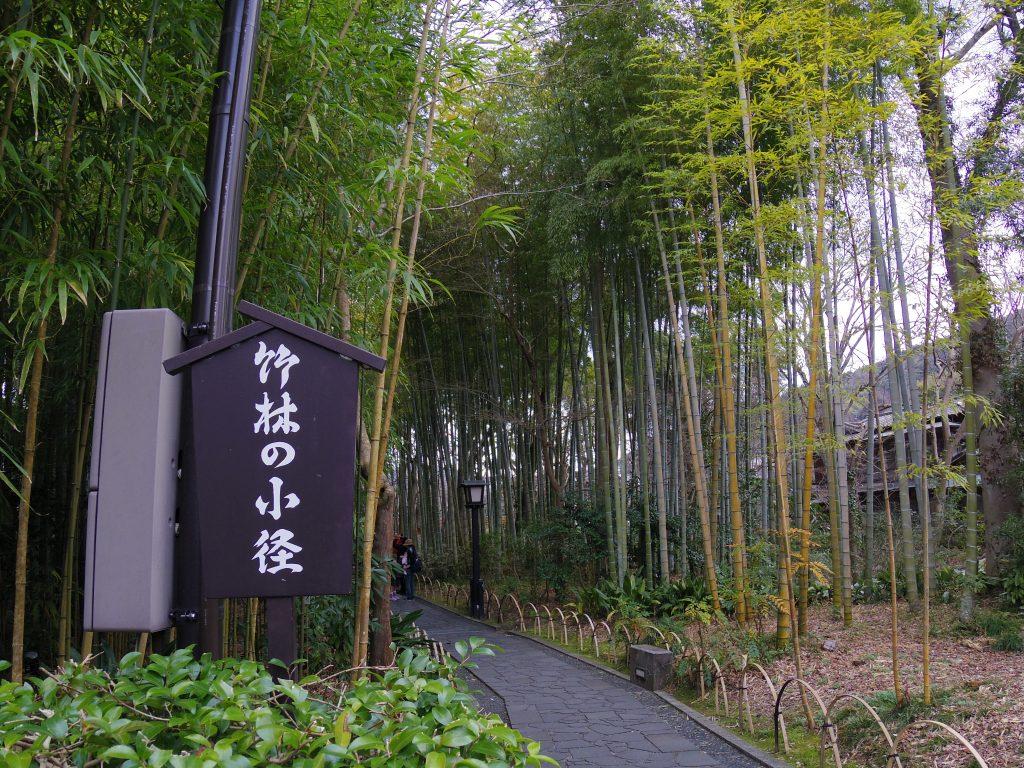 竹林の小径入り口
