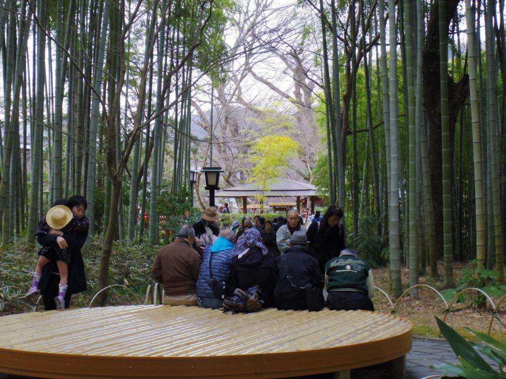 竹林の小径広場