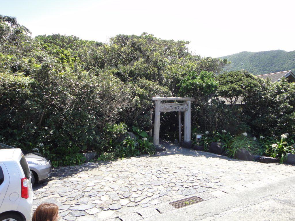 志戸子ガジュマル公園入り口