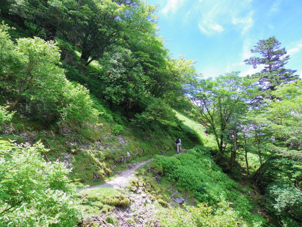 剣山トレイル