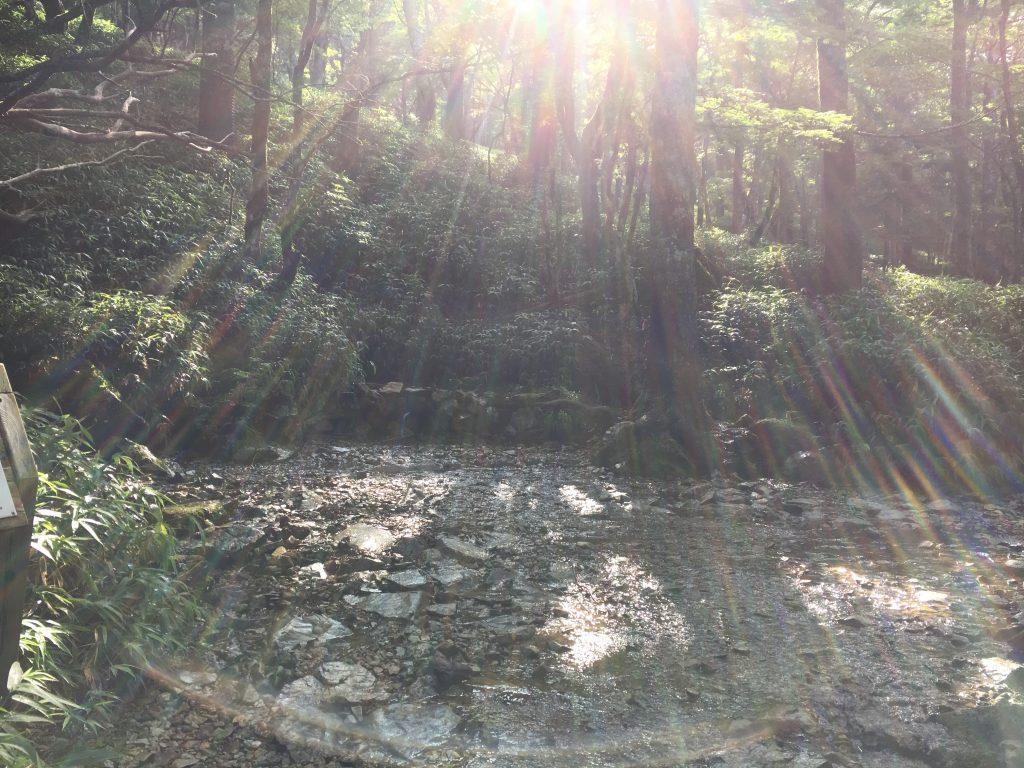 大台ケ原が育む恵みの水