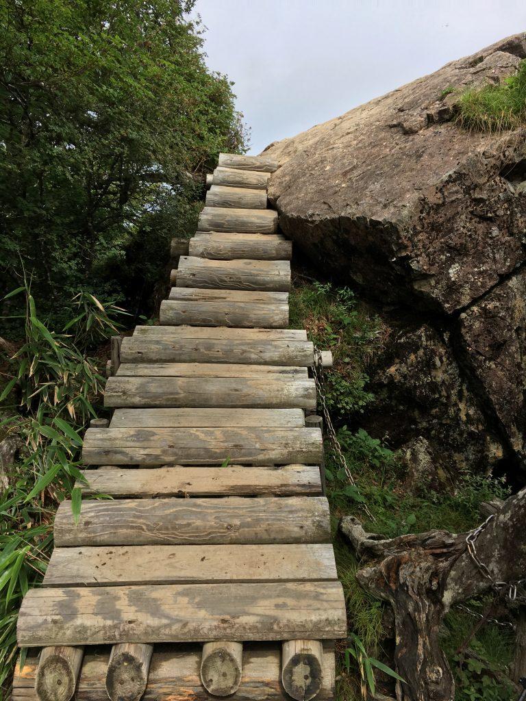丸太の階段