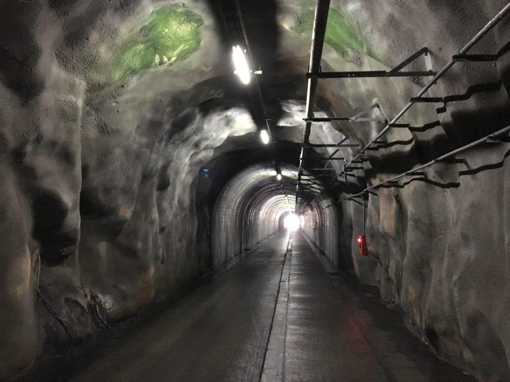 鬼ヶ城センターへの帰路のトンネル出口