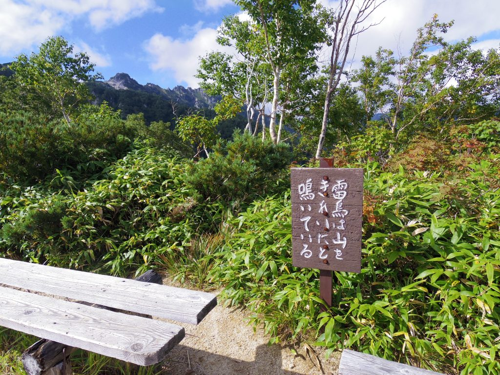 山頂付近のベンチ