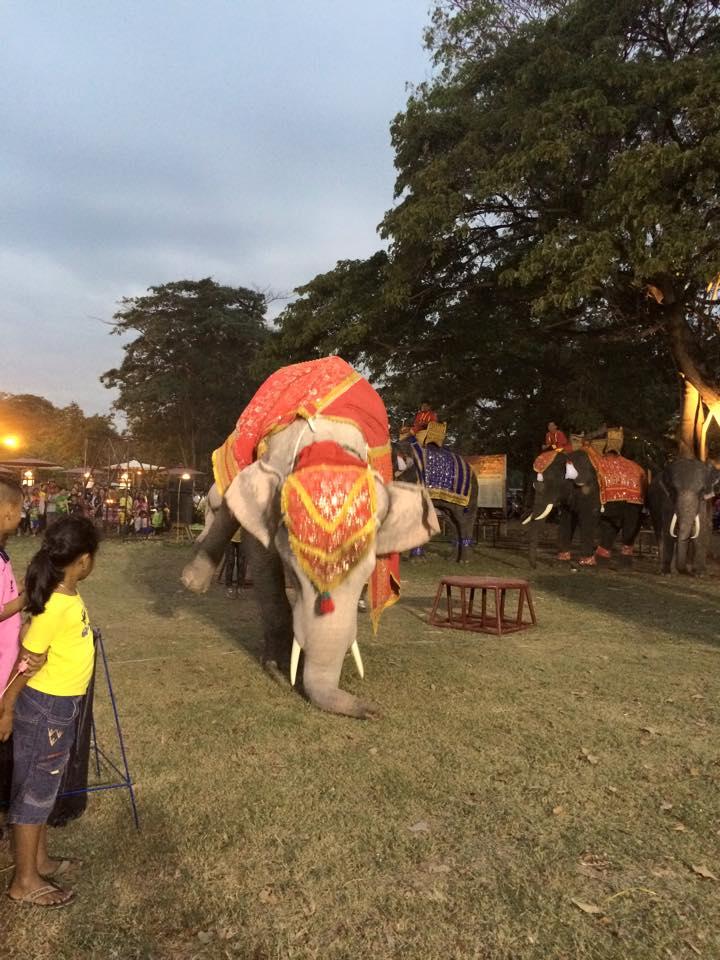 二本足で立つ象