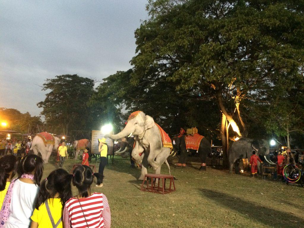 二本足で立つ象その2