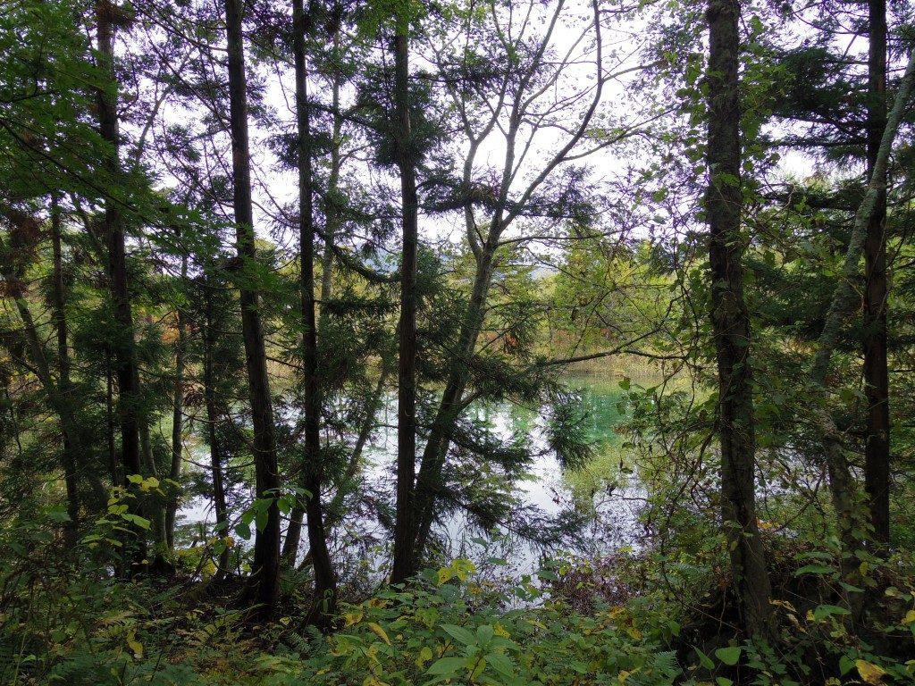 2つ目の沼