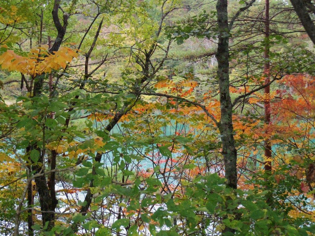 毘沙門沼の紅葉