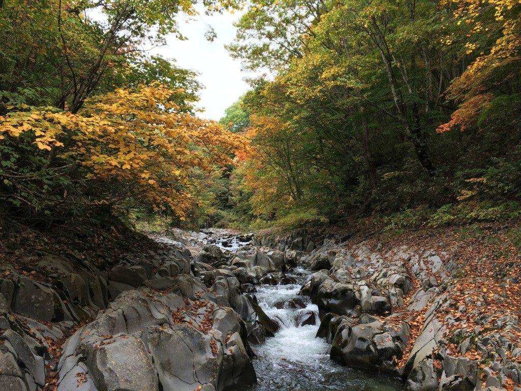 中津川渓谷その2
