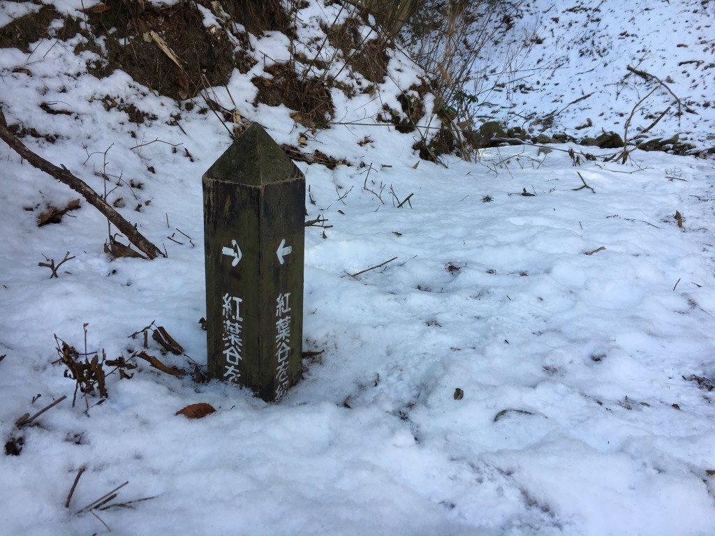 雪に埋もれた案内標識