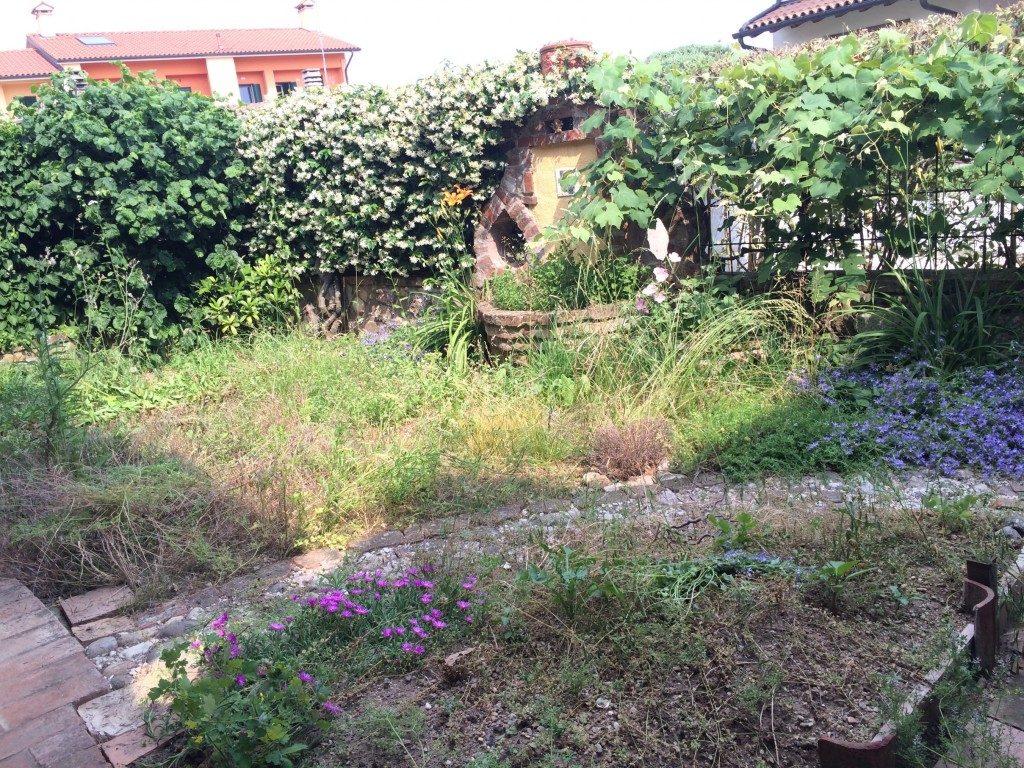 庭掃除その2