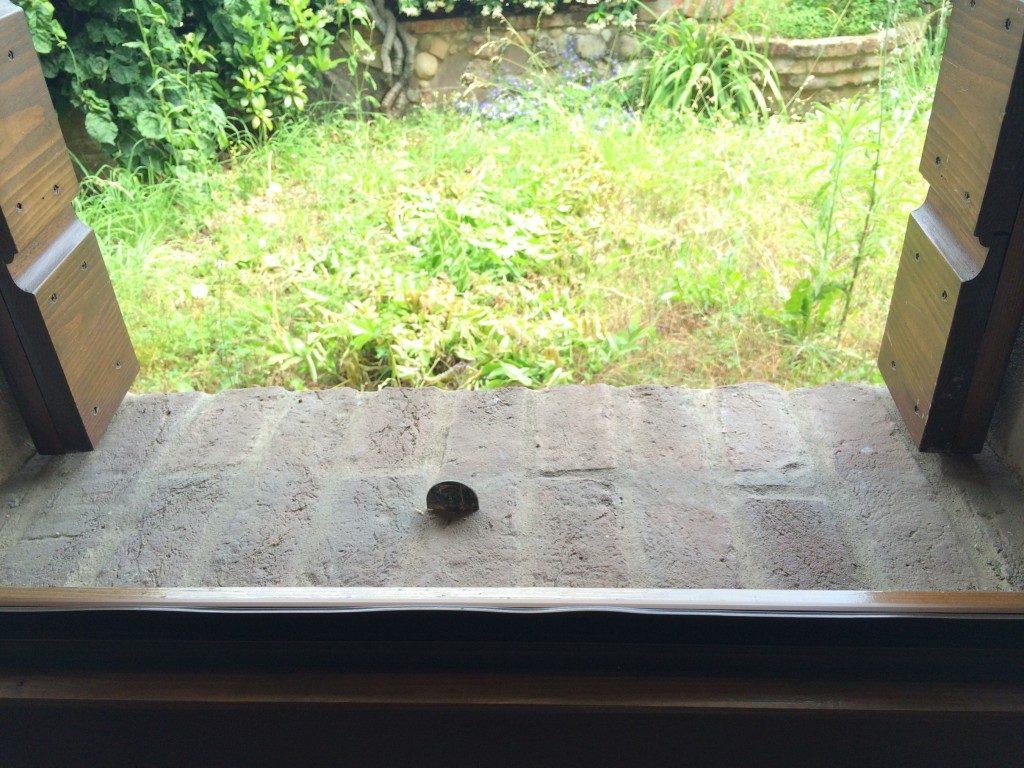 出窓その2