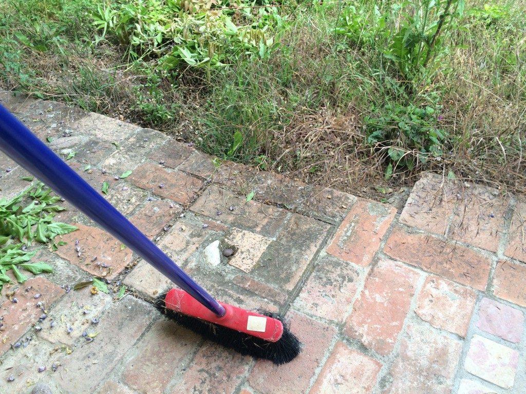 藤の花を掃除