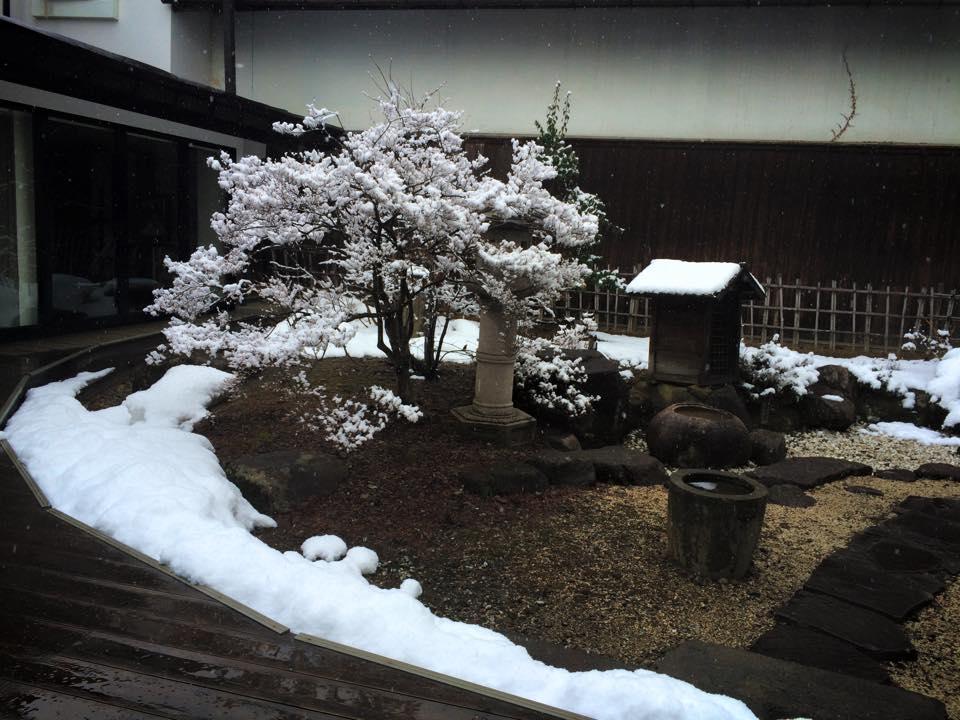 資料館の庭園2