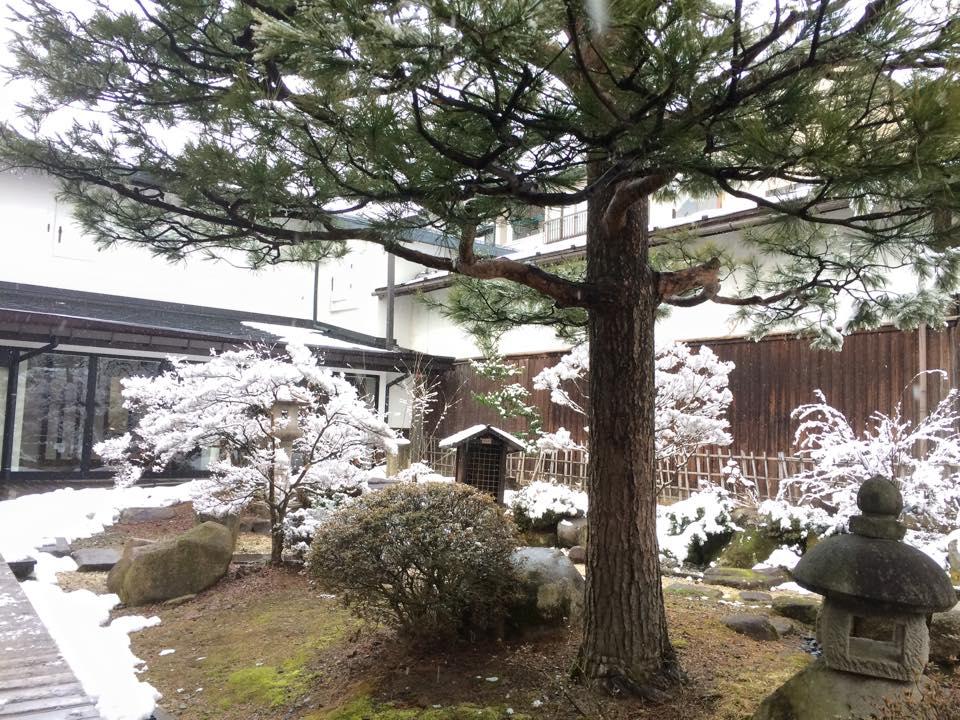 資料館の庭園