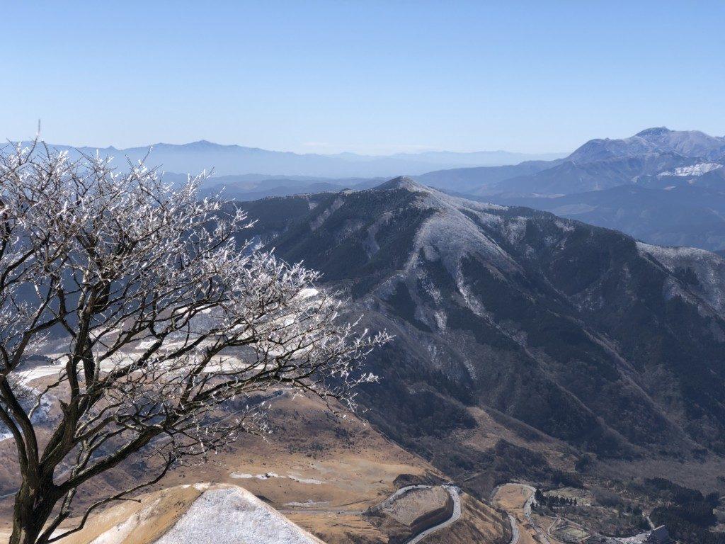 樹氷その2