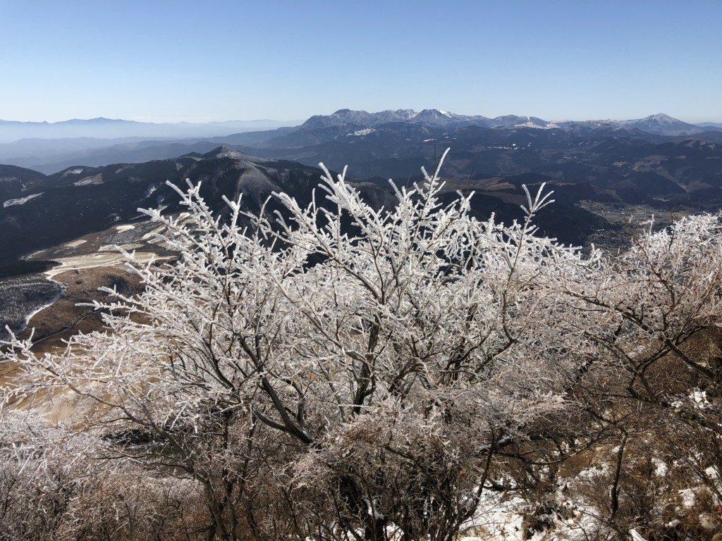 樹氷その3