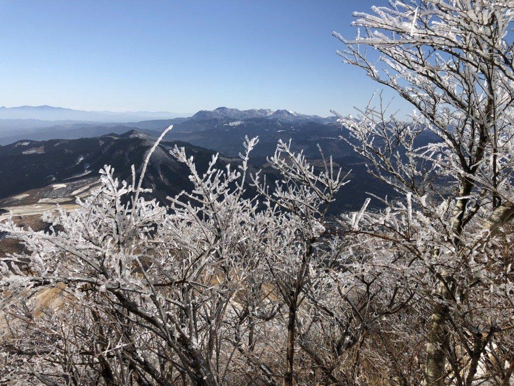 樹氷その4