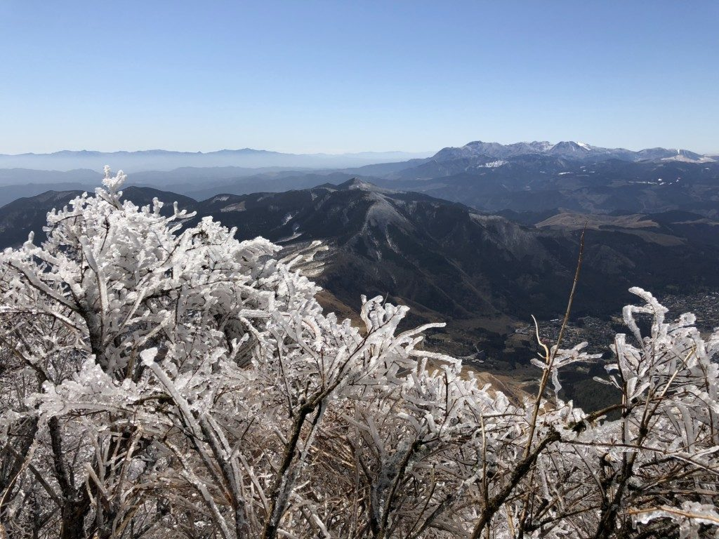 樹氷その5