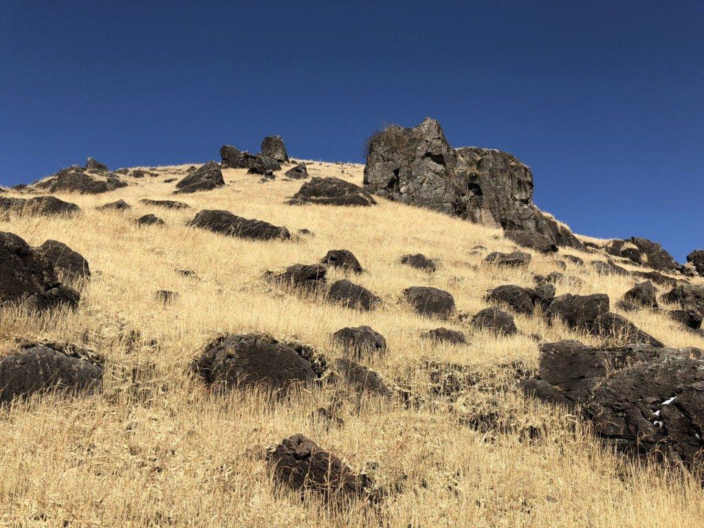 西登山口ルートその6