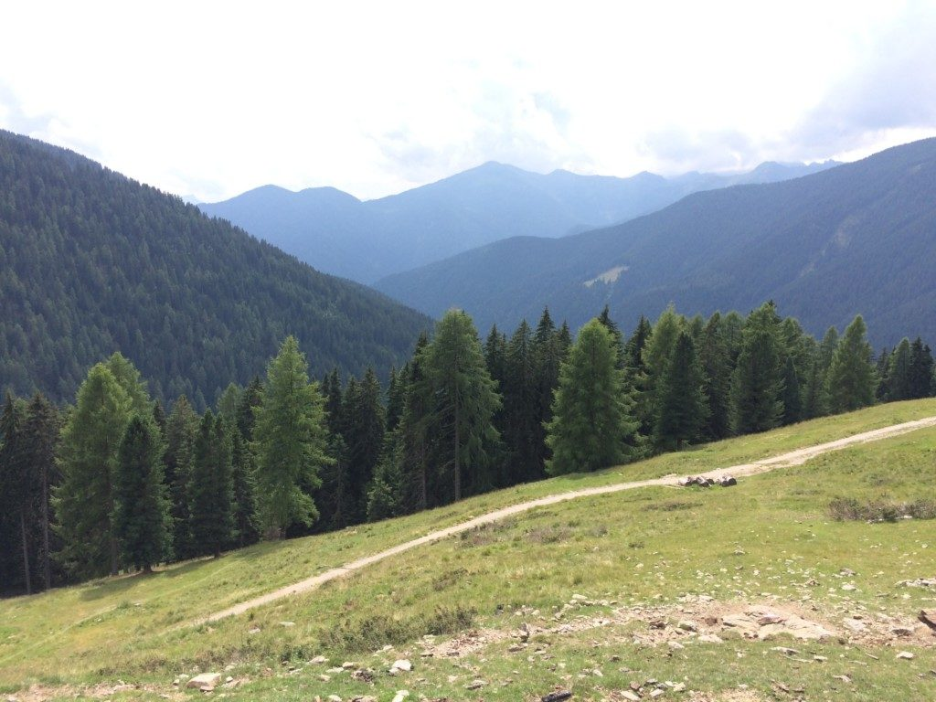 山小屋周辺の景色