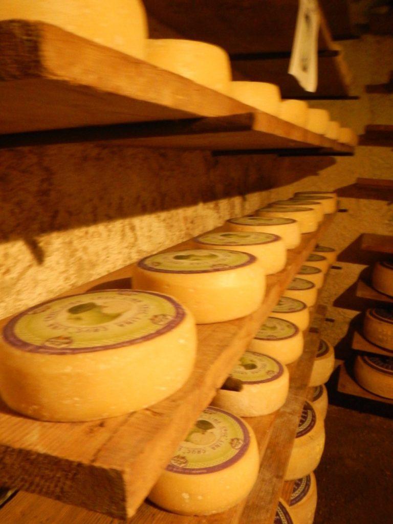 大量のチーズ