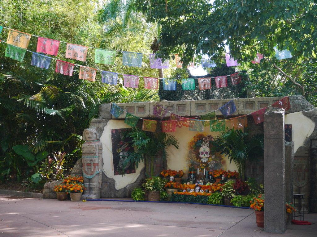 メキシコエリア3