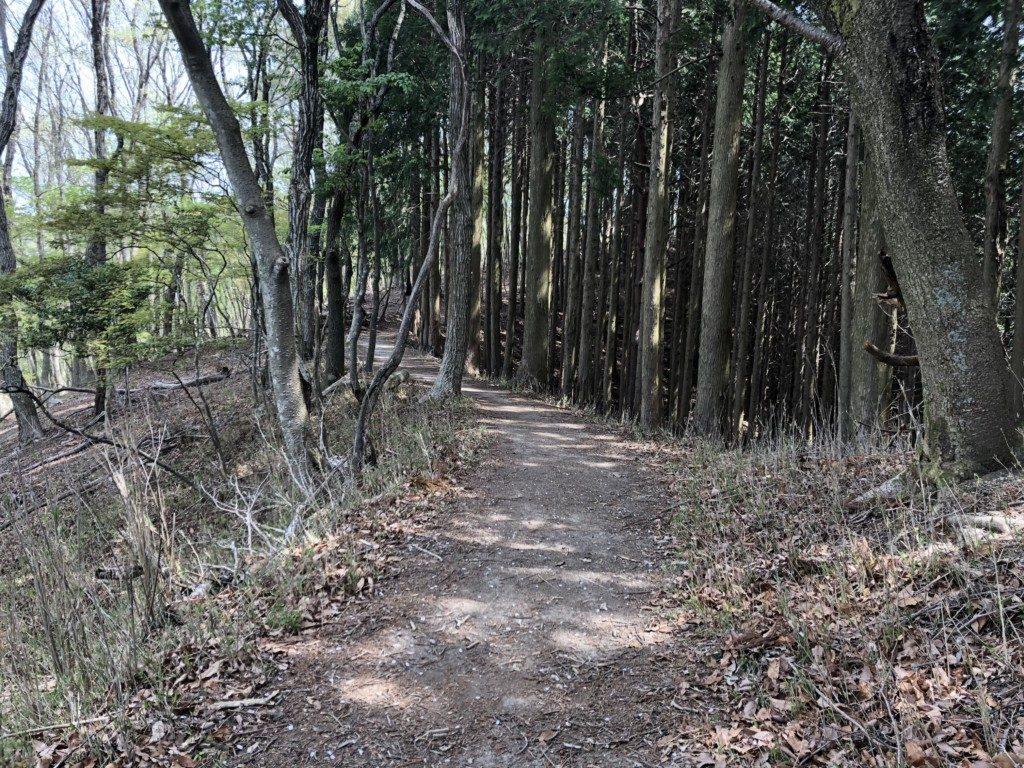 上杉尾根コースその5