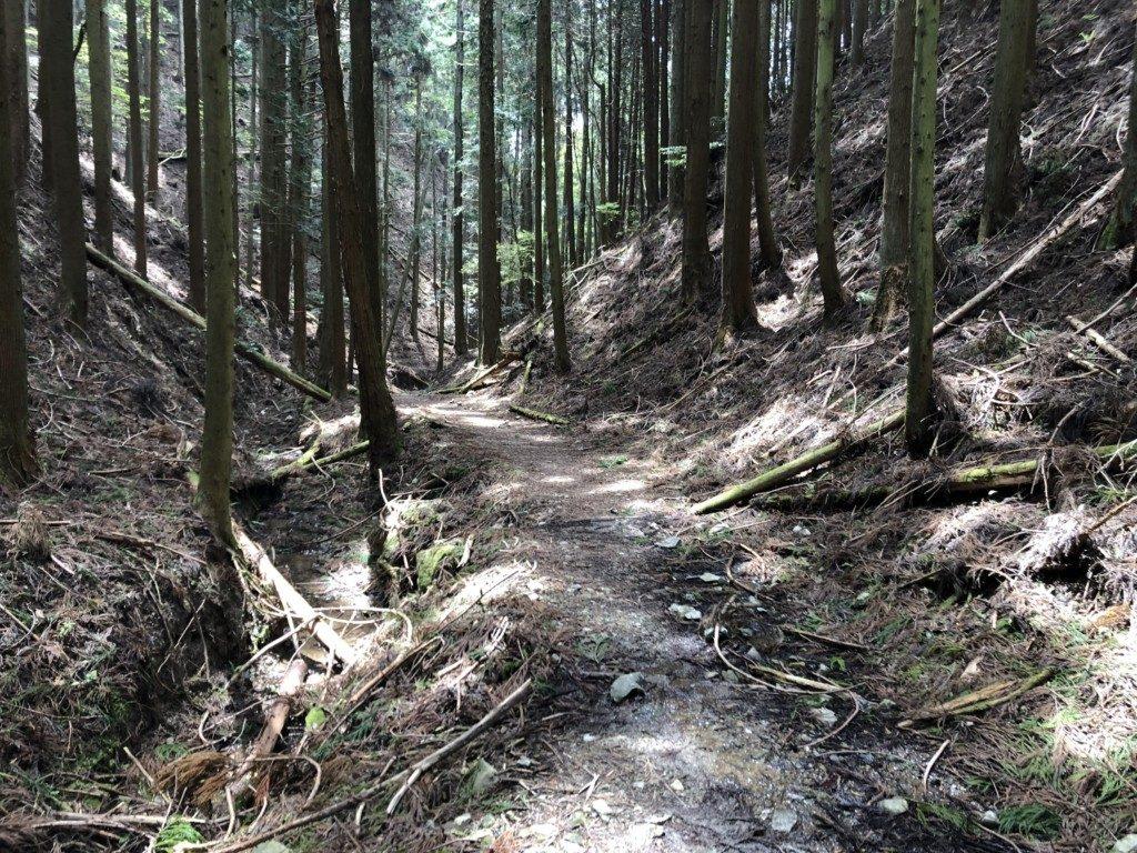 初谷渓谷コースその1