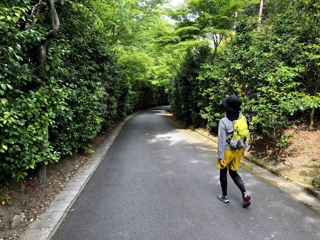 比叡山トレイルその7