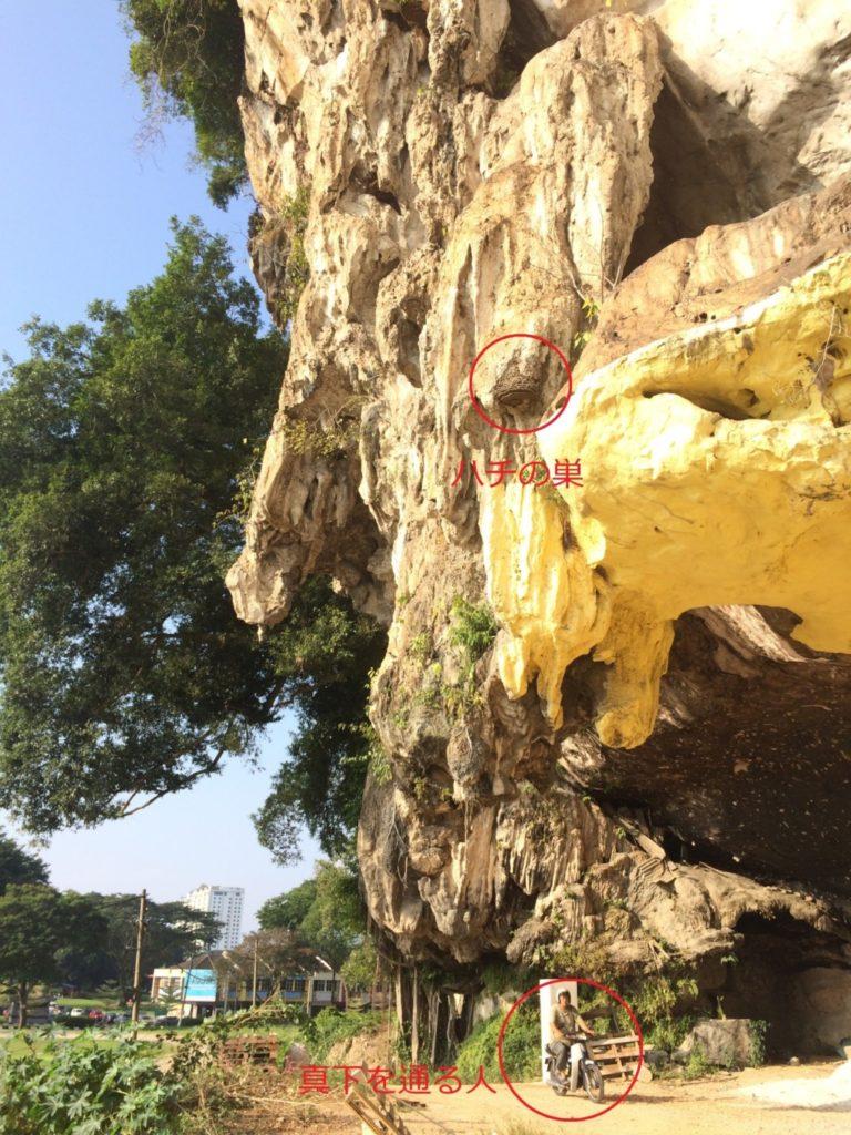 巨岩と蜂の巣