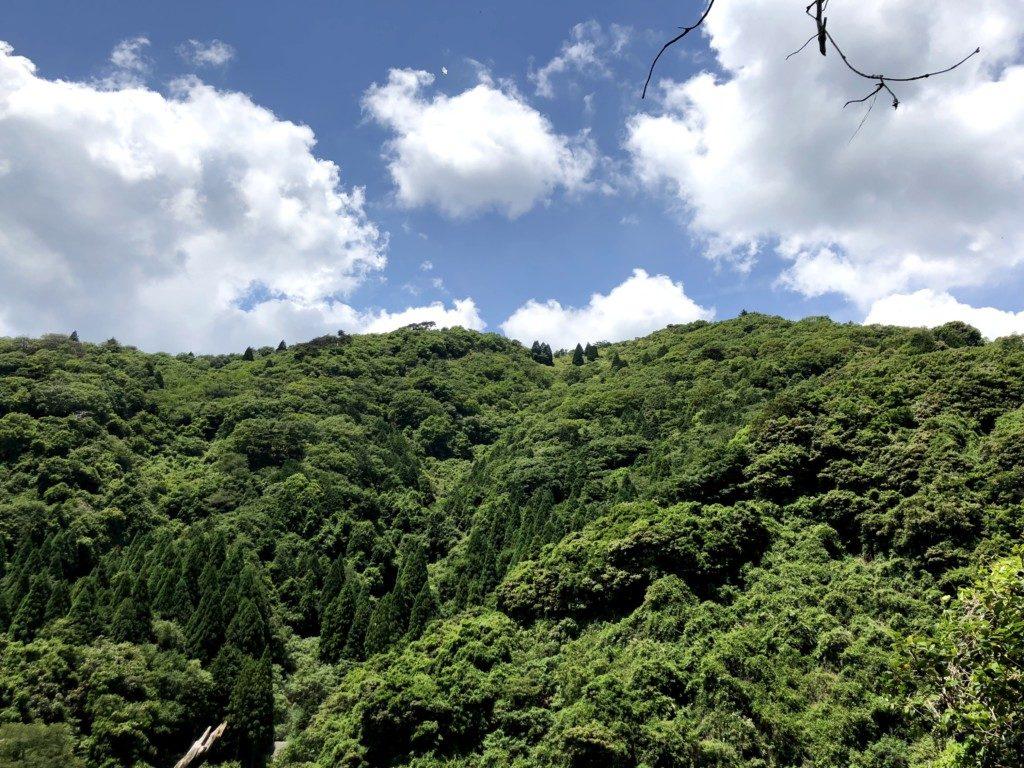 住吉道の景色