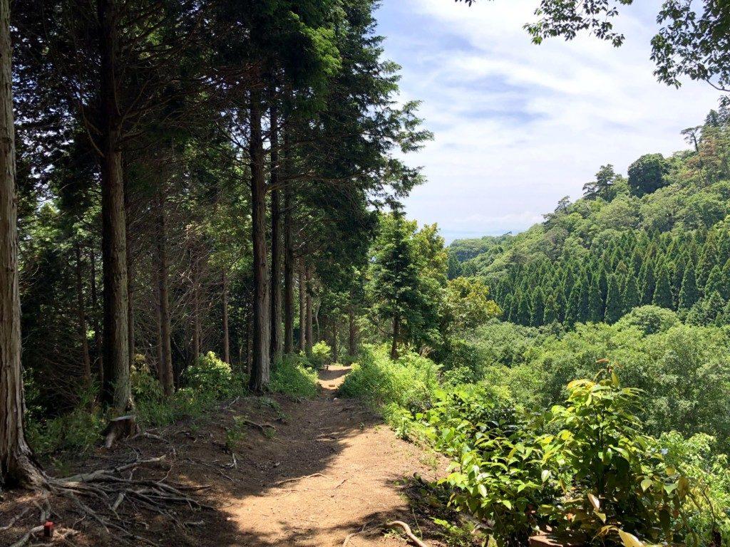 住吉道の渓谷