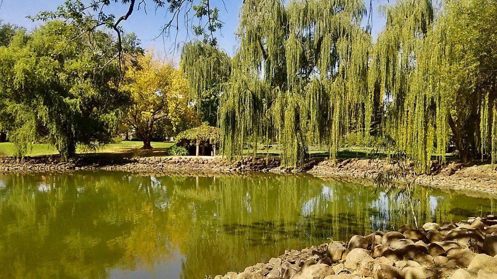 ボタニカル・ガーデン(Castlemaine Botanical Gardens)