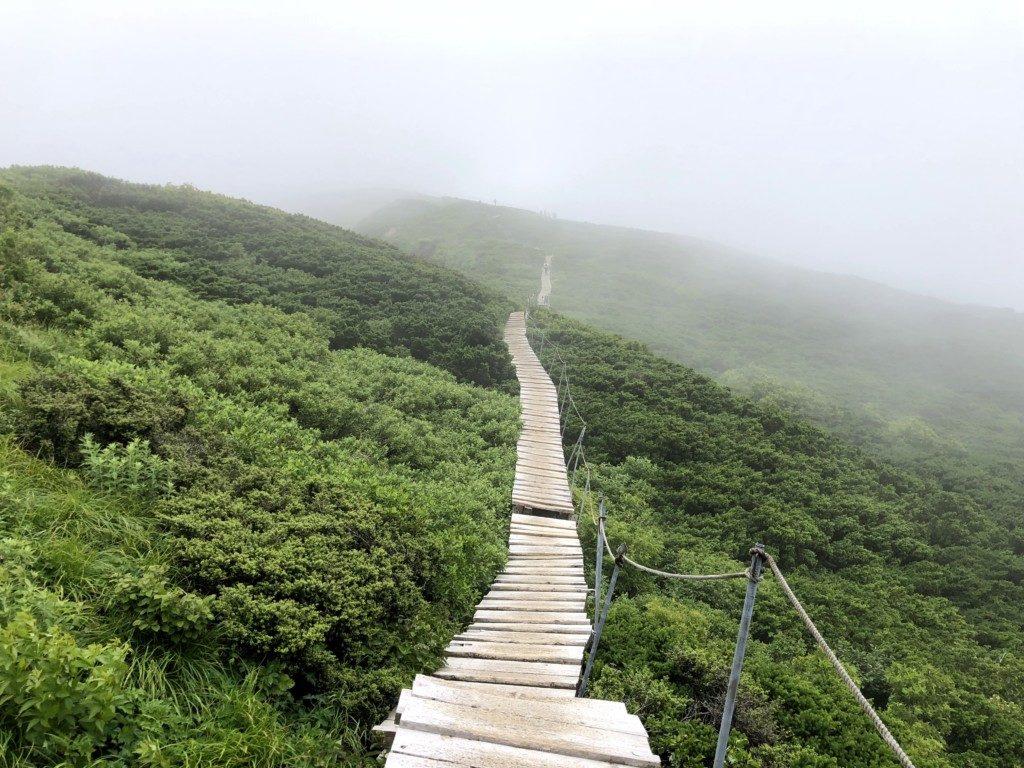 大山頂上まで200m