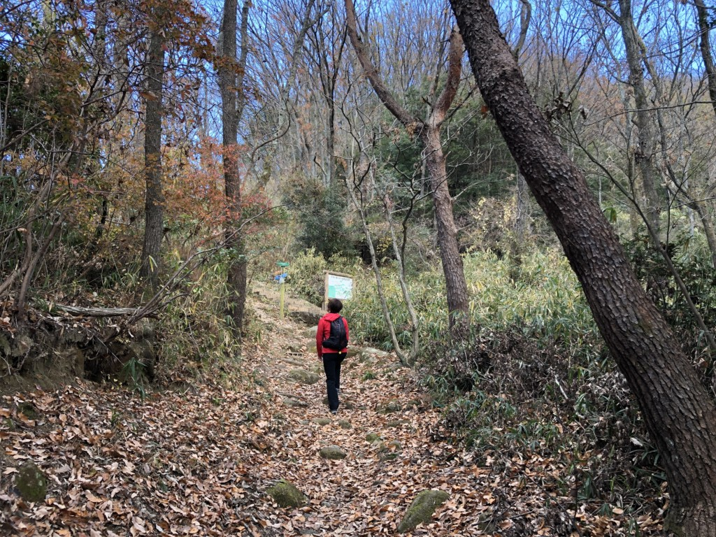 生駒山トレイル