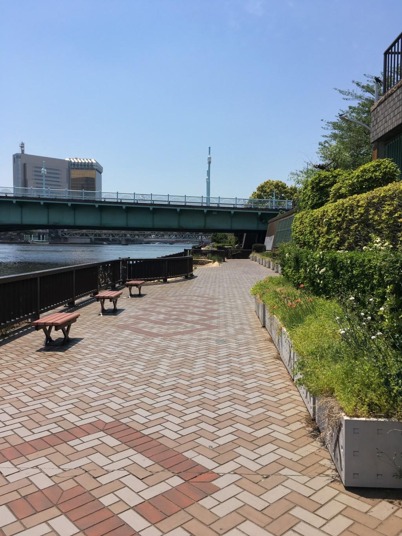 隅田川テラスのコース