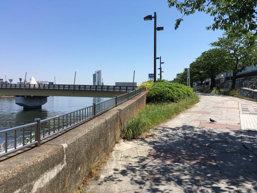 桜橋前の道