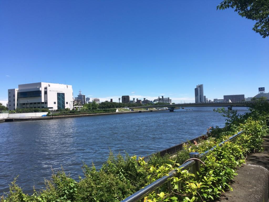 隅田川桜橋の手前地点